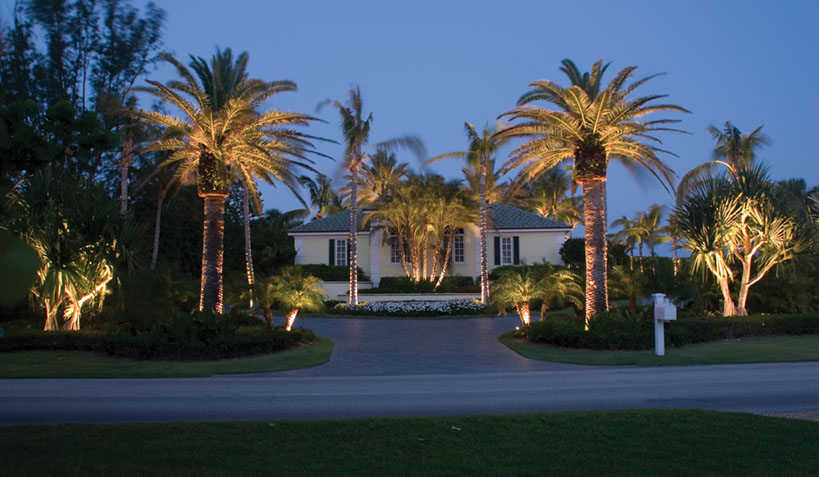 LargeHome_DatePalms